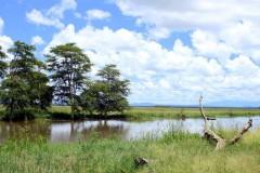 Gorongosa National Park   Mozambique