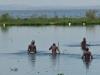 Lake Naivasha - Fishermen 01