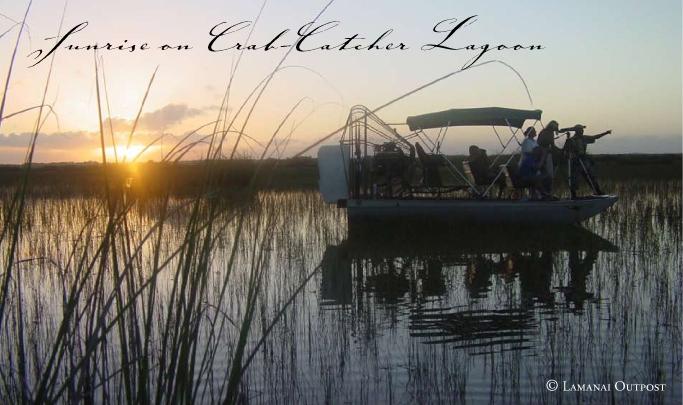 Lamanai Outpost Lodge sunrise