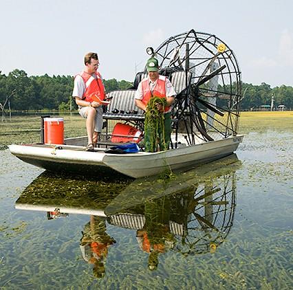 Lake Seminole, Florida - photo: Stephen Ausmus