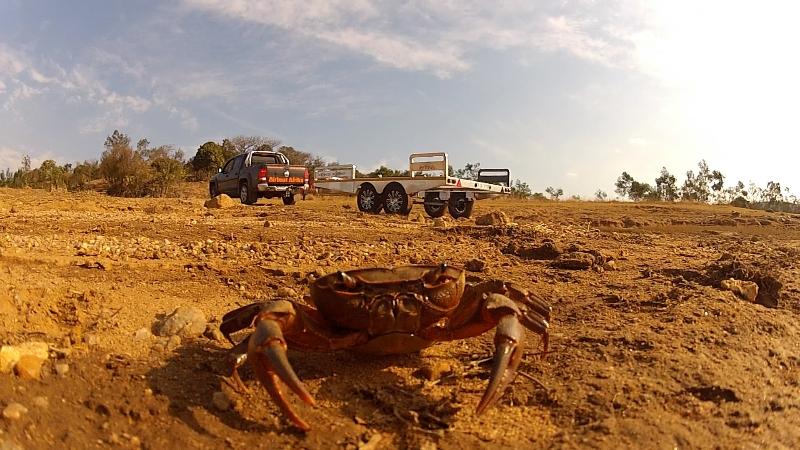 Gone Crabbing - Luphohlo Dam, Swaziland