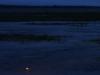 Lake Woodruff 7
